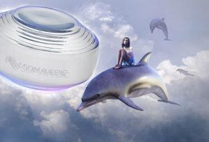 【ソマヴェデック体験談】イルカたちが祝福!5G対策装置「スカイ5G」が我が家にやって来た!